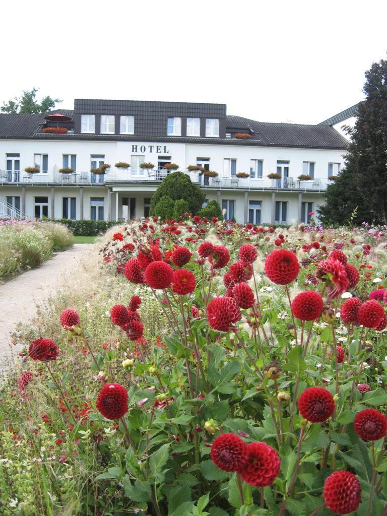 Landesgartenschau Bad Lippspringen 2017