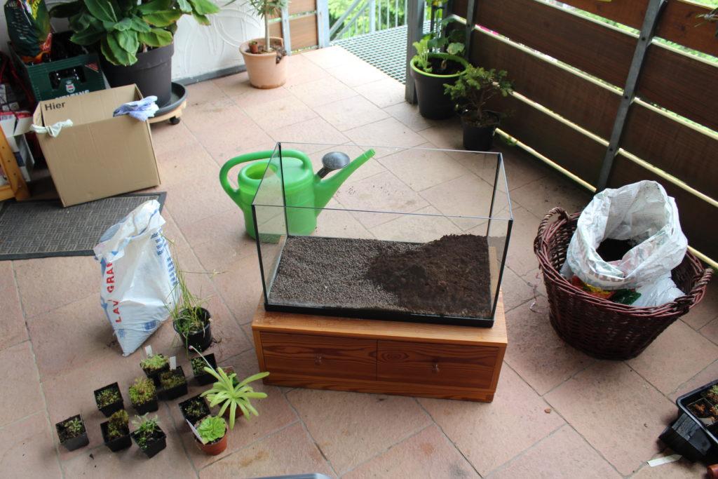 Terrarium mit Schicht aus Lavagranulat